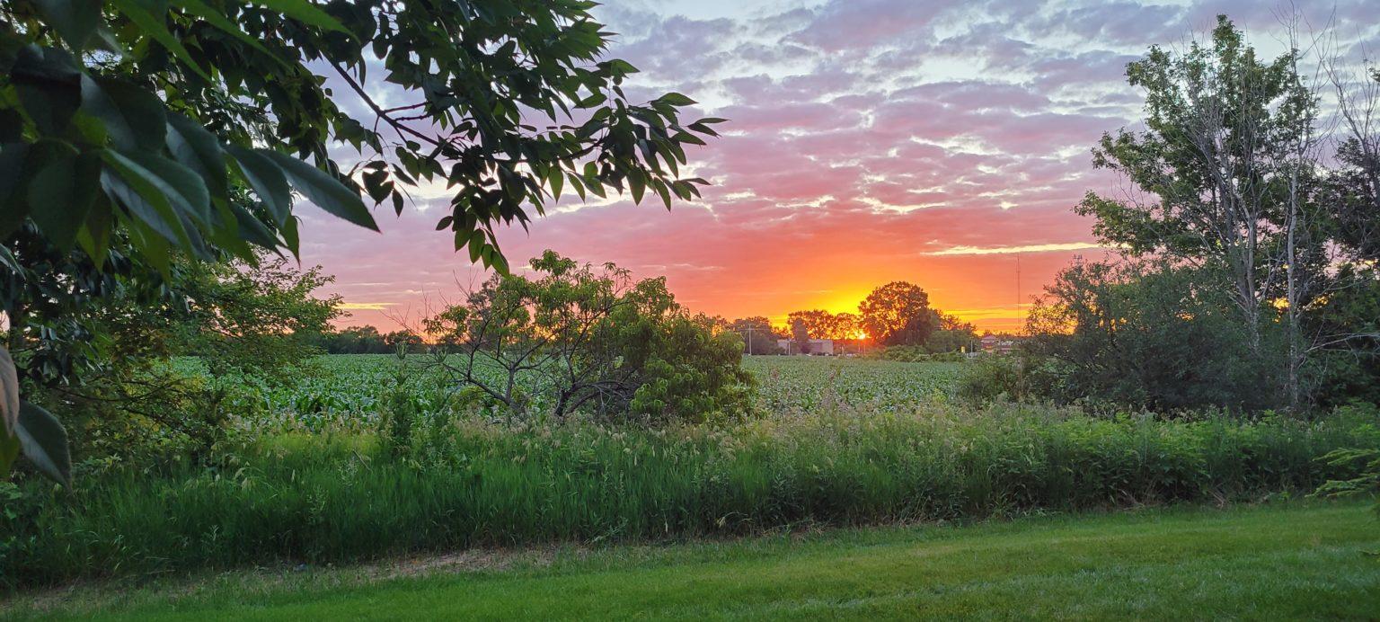 Fifth Place: Andrew W. -- Oswego, Illinois